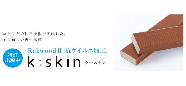 kskin-top.jpg