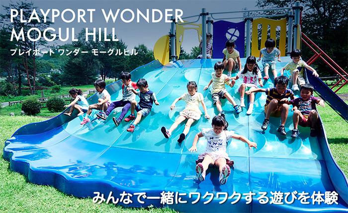 mogulhill_web.jpg